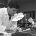 Разработаны микронасосы для точного анализа ДНК