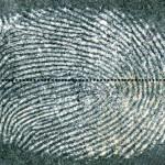 Разработан новый метод идентификации отпечатков пальцев