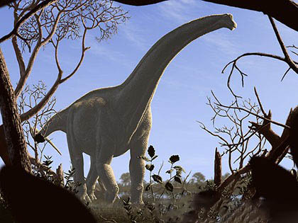 sauropod_dinosaurs