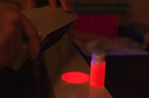 Кремниевые наночастицы могут сделать светодиоды дешевле