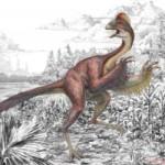 Ученые открыли новый вид птицеподобных динозавров