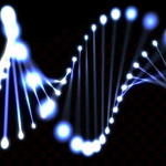Ученые смогли соединить два человеческих мозга через сеть интернет на расстоянии в 5 километров