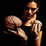 Ученые: Женщины и мужчины по-разному реагируют на негативные эмоции