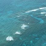 Ученые: Благополучие людей на планете напрямую зависит от океанских течений
