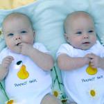 Нашли объяснение рождению аномального числа близнецов в США