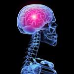 Австралийские ученые установили влияние рака на память