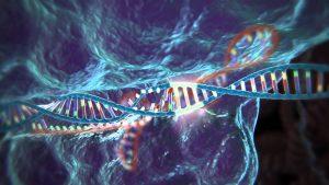 Ланнер использует метод генного редактирования известный как CRISPR