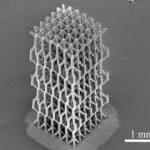 Новый метод позволяет воспроизводить 3D очень сложные биоподобные структуры