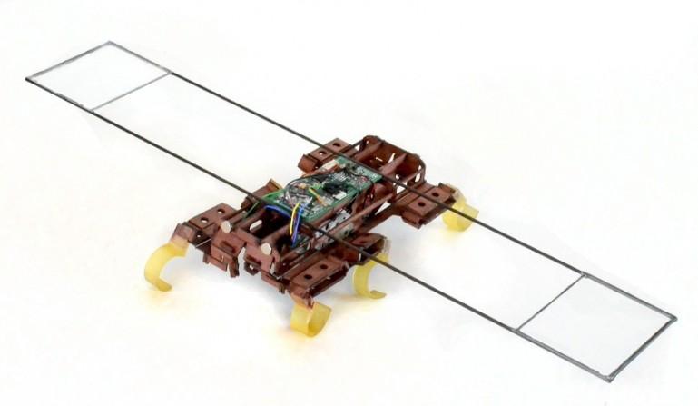 VelociRoACH может достичь скорости движения до 2,7 метров в секунду или 26 длин своего тела в секунду
