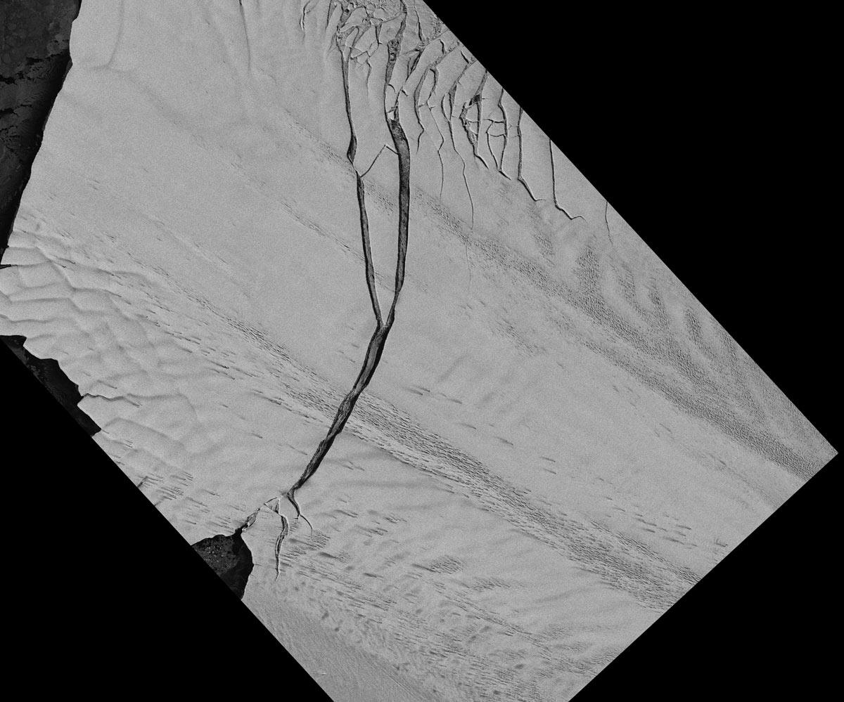 В Антарктиде образовался айсберг площадью с Нью-Йорк