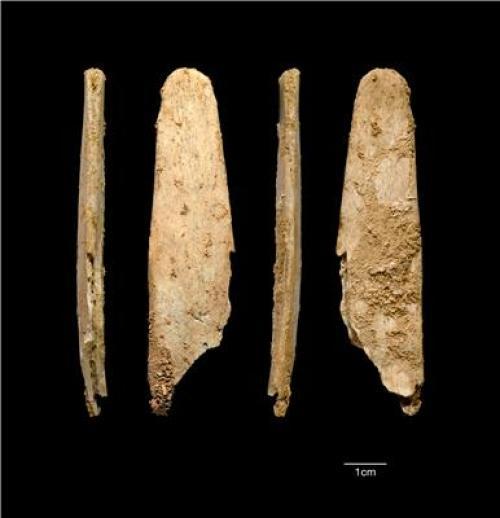 Неандертальцы до современных людей делали костяные орудия