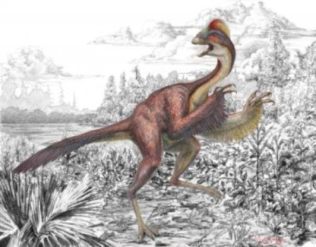 Реконструкция по найденным скелетам нового вида овирапторов - Anzu wyliei