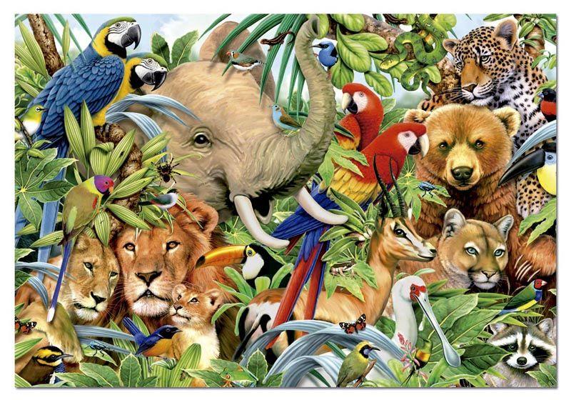 животные на грани вымирания?
